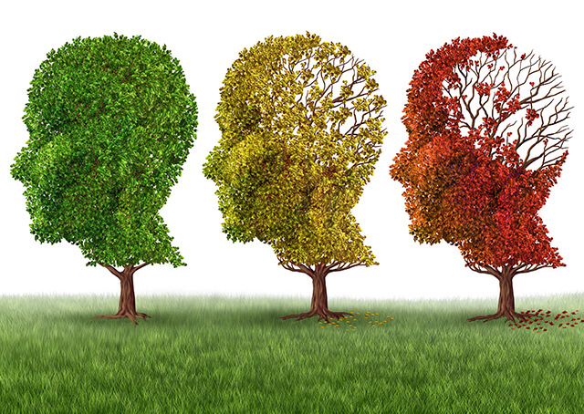 Forgetfulness: Normal Ageing or early Dementia?